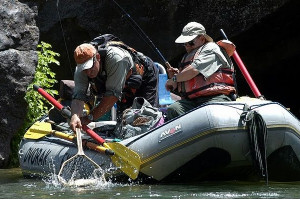 Dvorak Expeditions - Colorado Guided Fishing Trips
