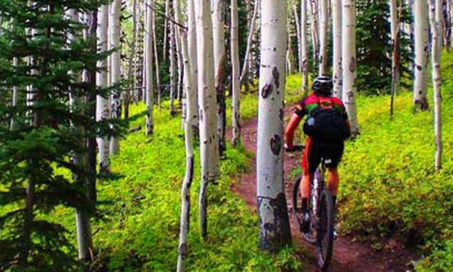 Telluride Colorado Recreation Mountain Biking