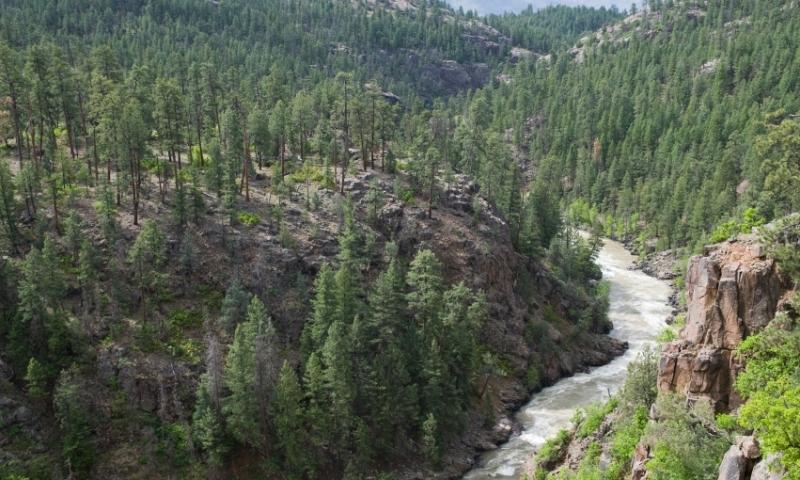Animas River Colorado White Water Rafting