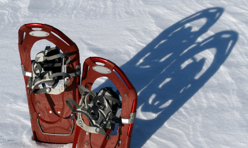 Snowshoes Snowshoeing